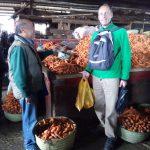Praktische taalles op de markt. Boodschappen doen in Malagasy met Henry, de leraar.